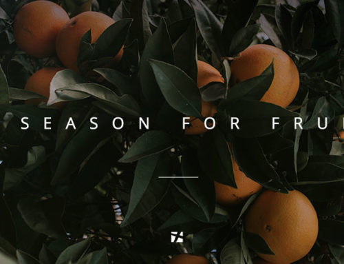 A Season for Fruit